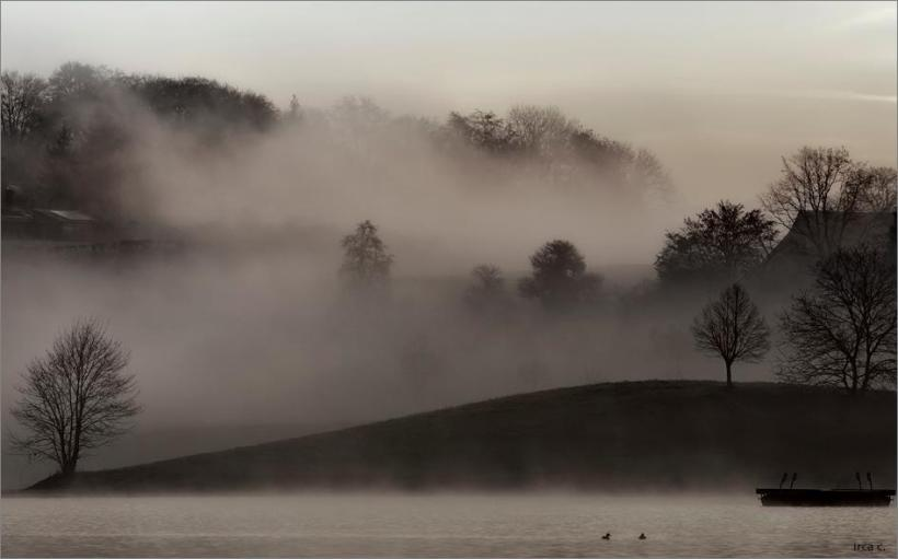 "Immagine | design d'autore ""... through the mist"""